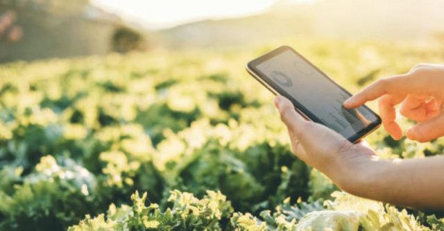 agricoltura-di-precisione-puglia-nexima
