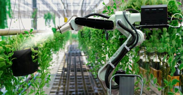 agricoltura-rigenerativa-nexima